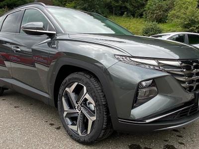 Hyundai Tucson 1,6 CRDI 4WD 48V Prestige Line DCT bei BM    Schnitzer GesmbH in